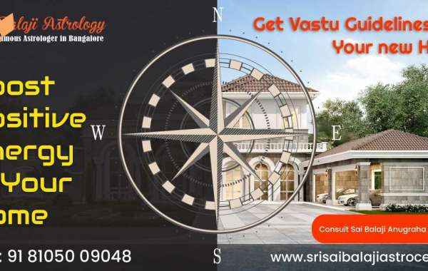 Online Astrology Consultation Services By Sri Sai Balaji Astrocentre